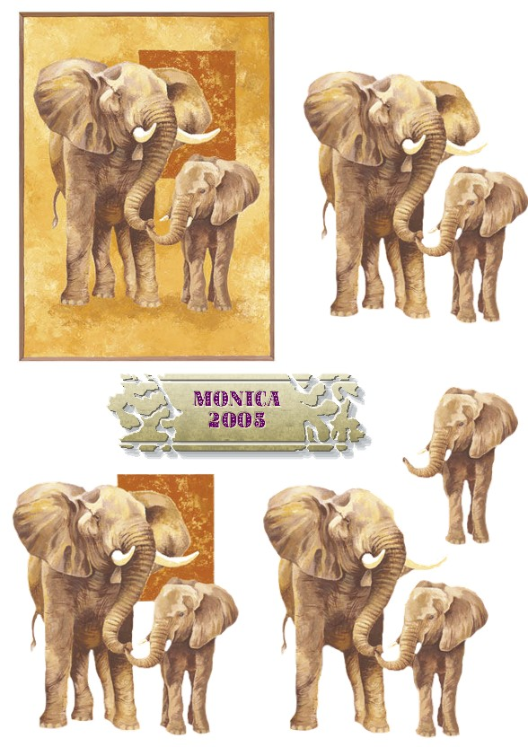 monica-elephants.jpg